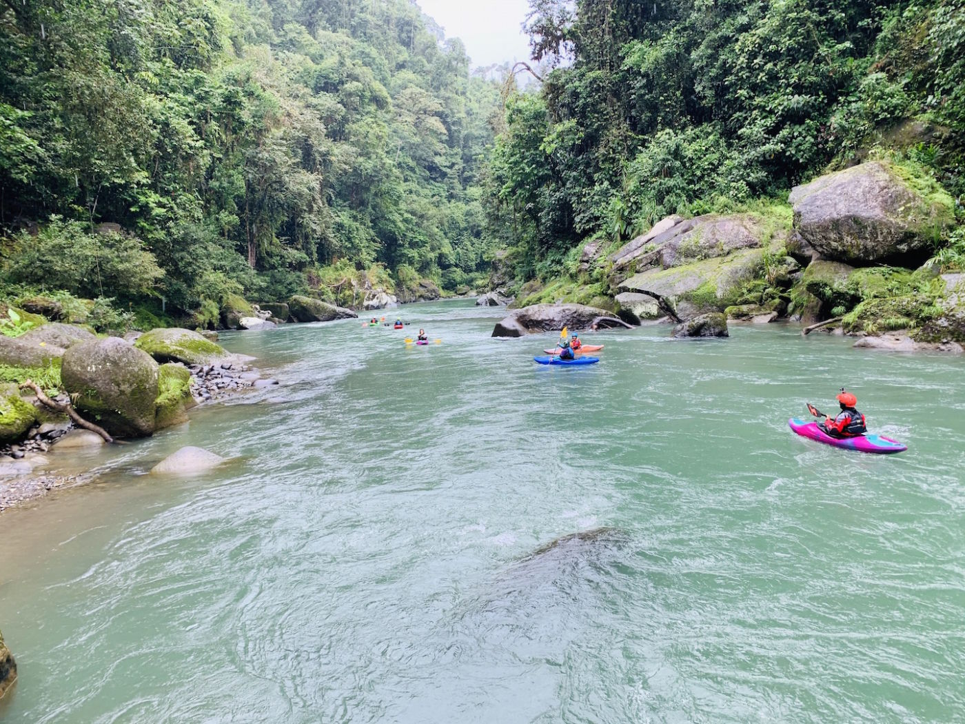 anna levesque leading a group of whitewater kayakers down the pacuare river in costa rica